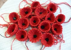 The Big Poppy Knitting Project featured image