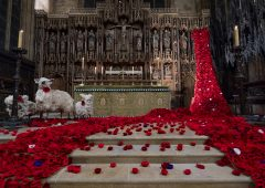 Festival of Remembrance wins Pride of Boston award featured image