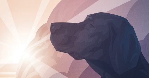 God-Bites: Do Animals Go to Heaven? featured image
